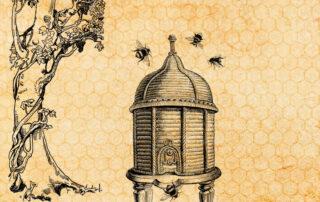 historia de la miel