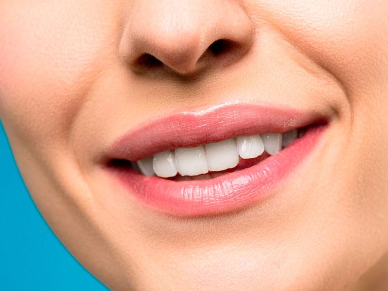 Beneficios del propóleo para la salud dental - El Colmenar de Valderromero